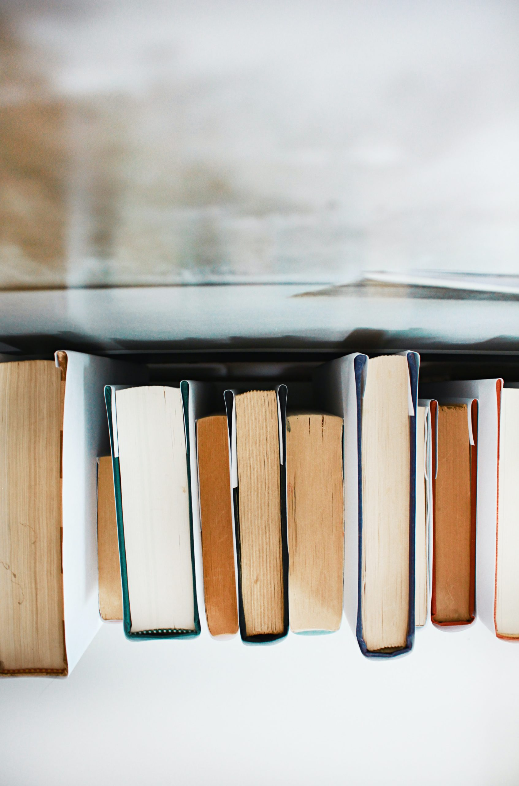 Top Reads of 2019